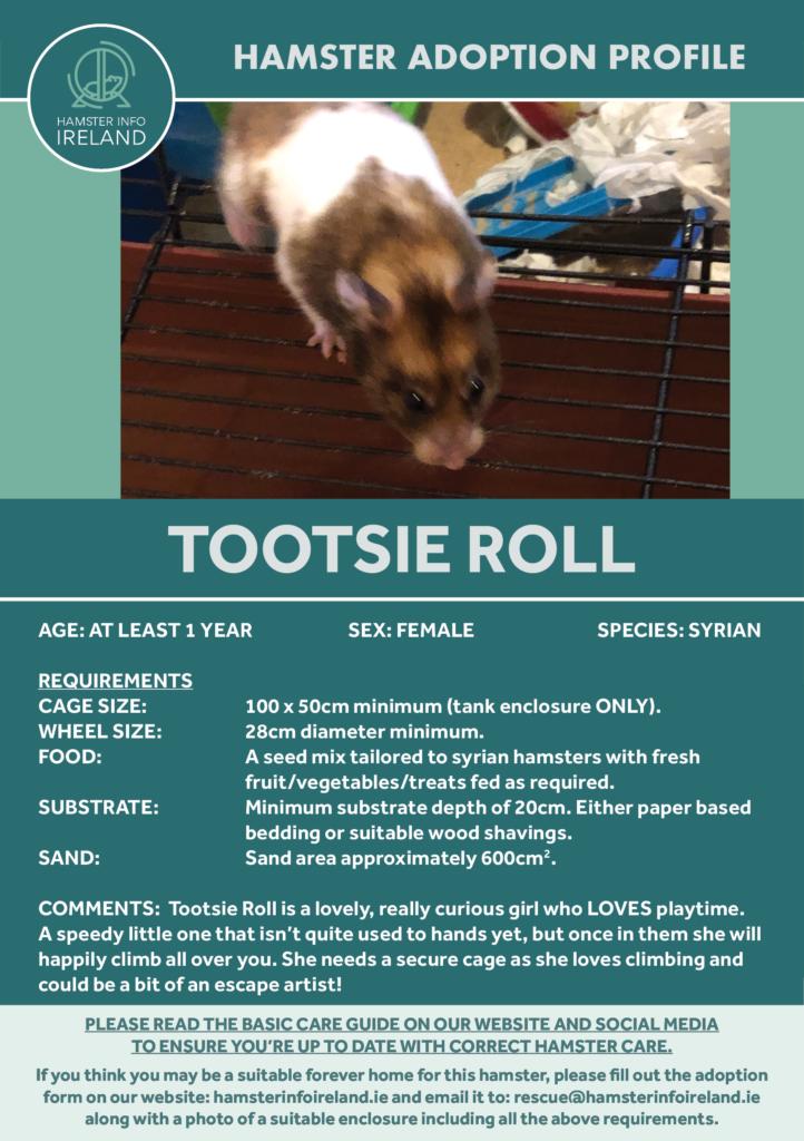 Tootsie Profile